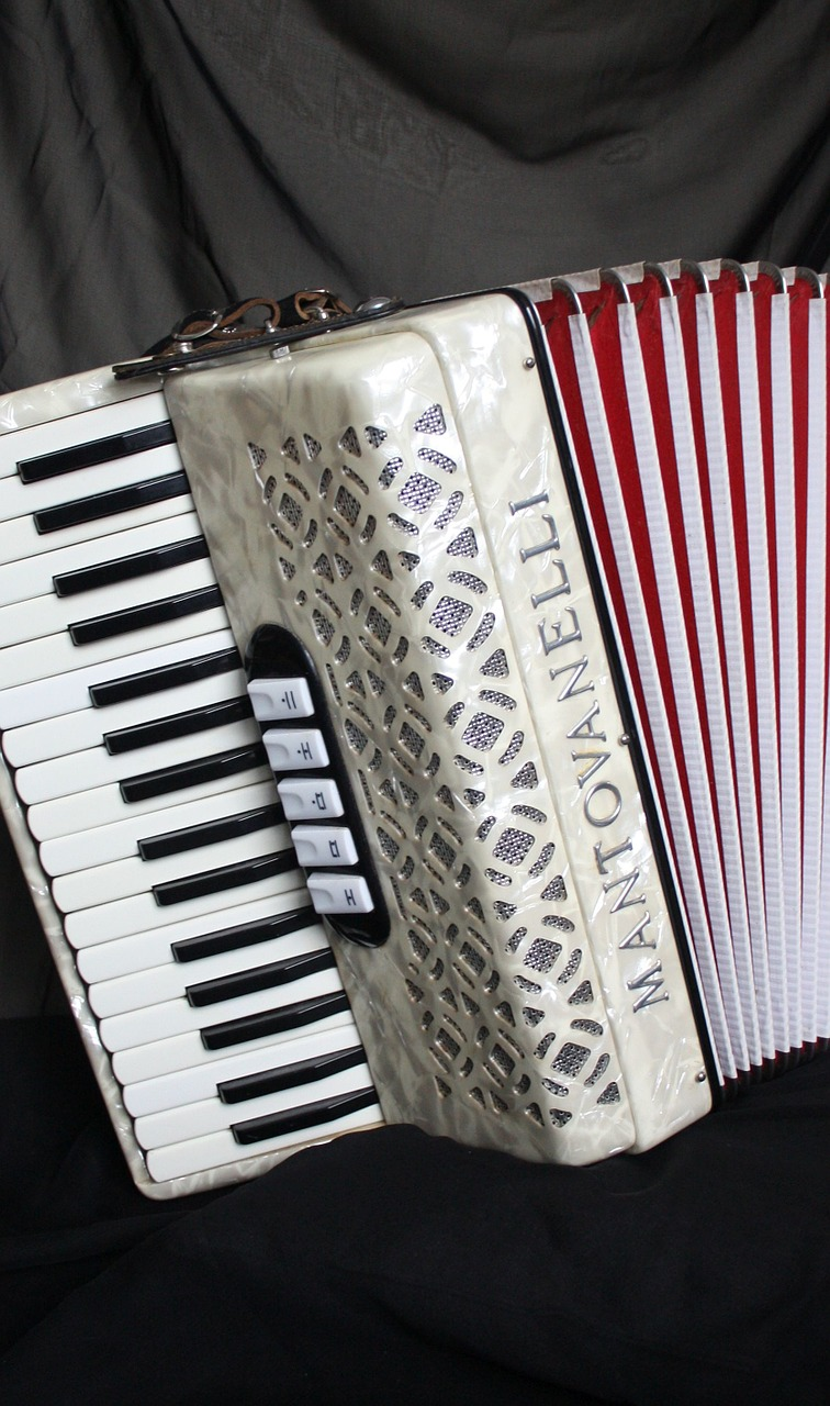 accordion,squish,music,free pictures, free photos, free images, royalty free, free illustrations, public domain