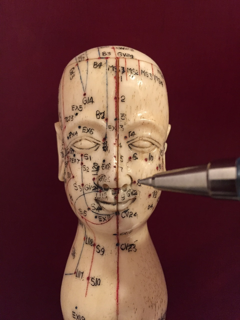 Download Free Photo Of Acupuncture Acupuncture Points Acupuncturist Medicine Stimulation From Needpix Com