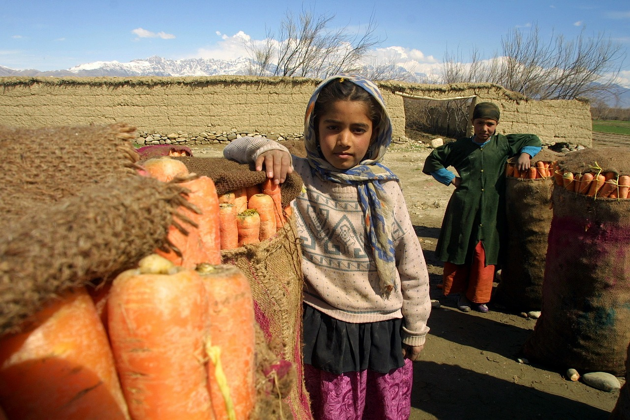 afghanistan children carrots free picture