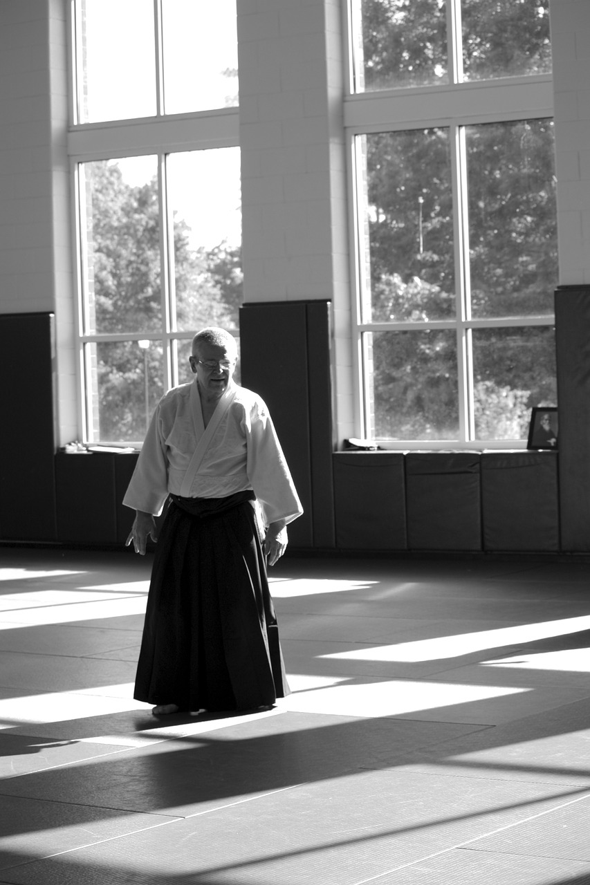 aikido martial arts self-defense free photo