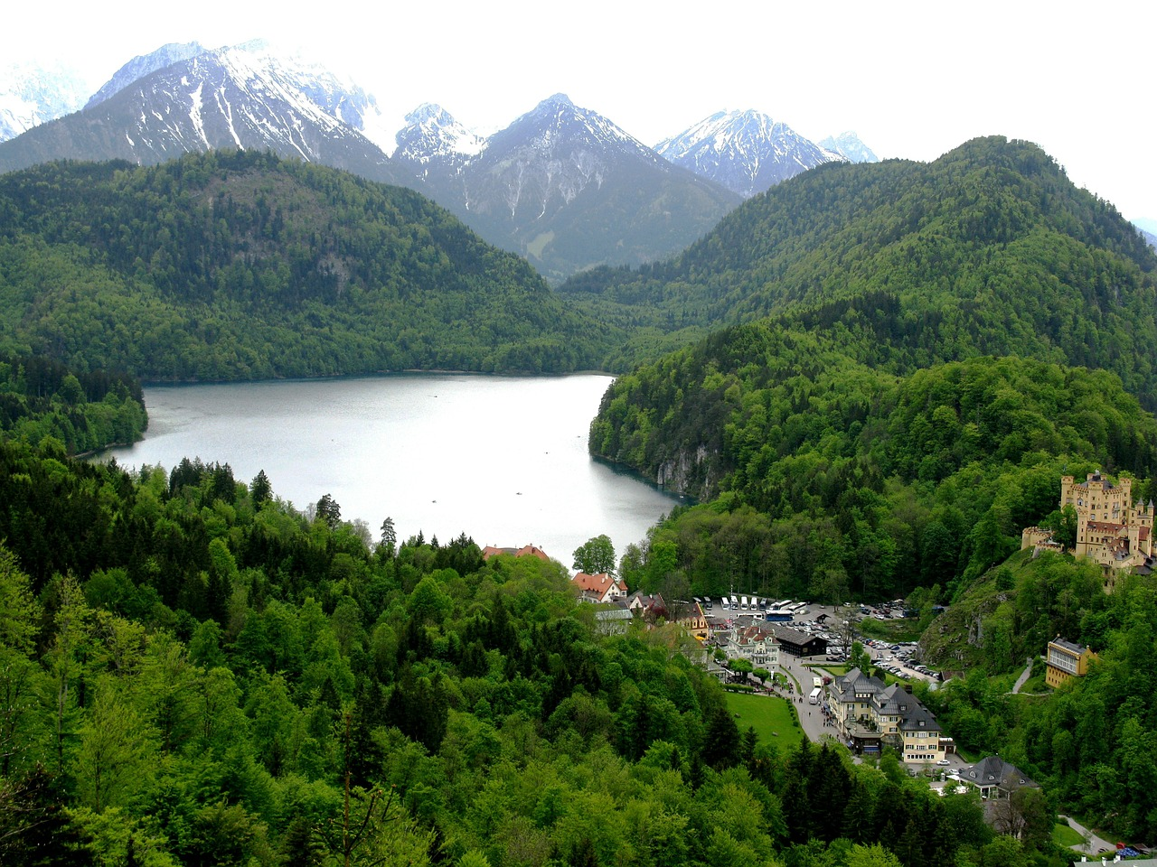 alpsee hohenschwangau forest free photo