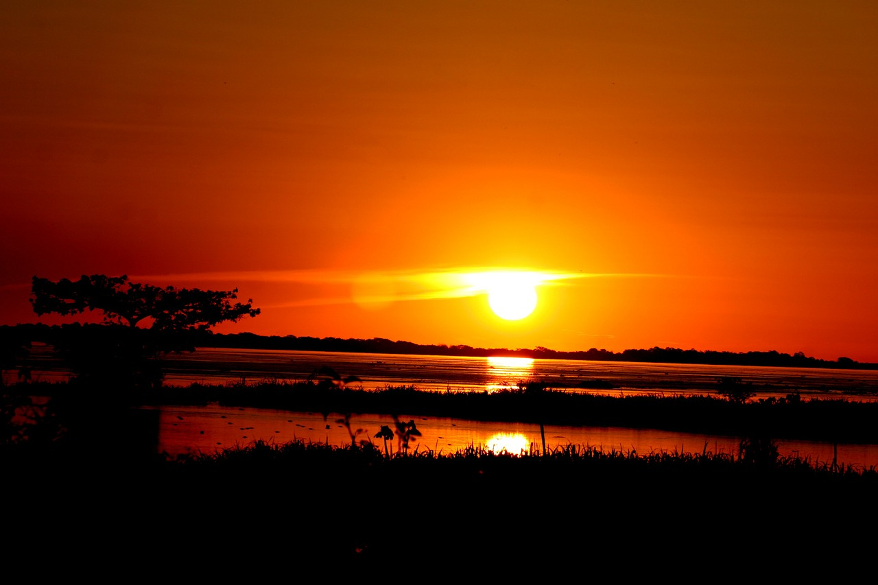 amazonas sunset amazon river free photo
