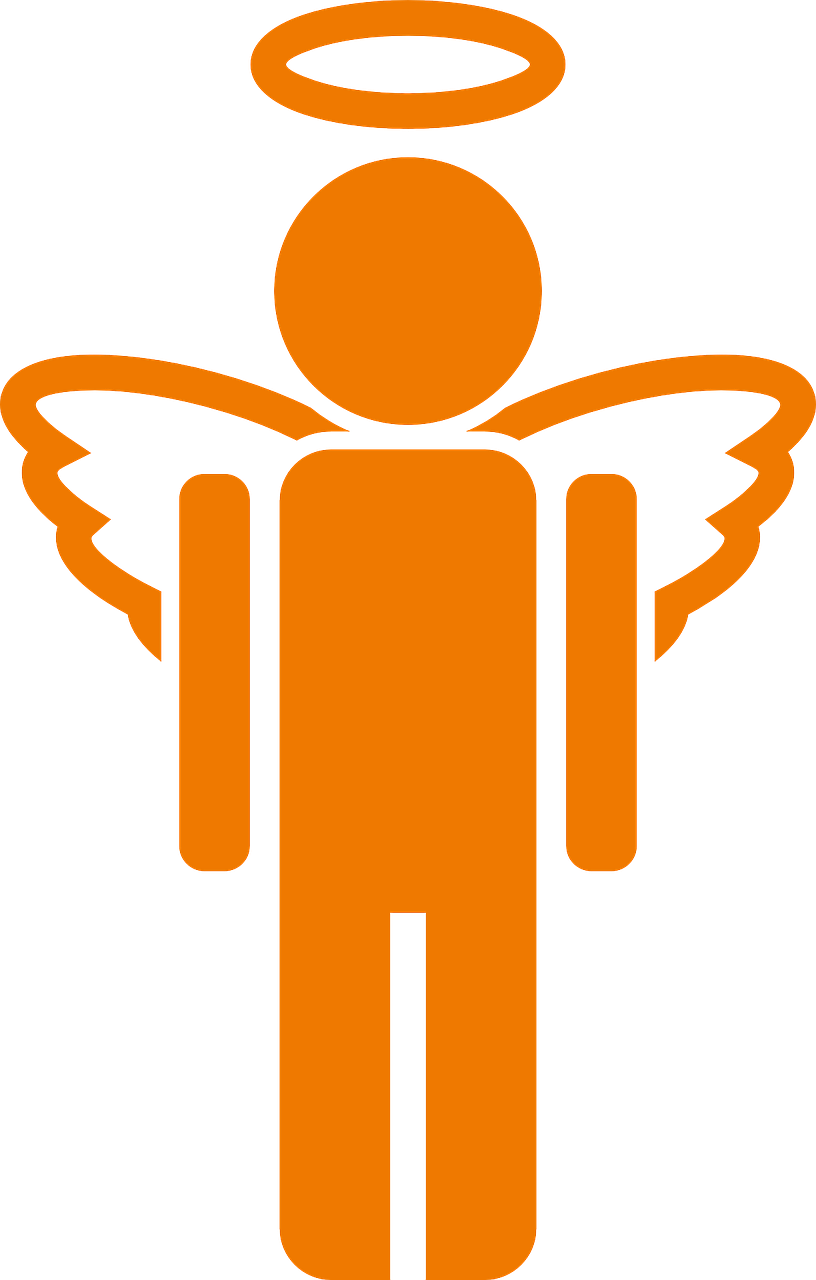 angel boy wings free photo