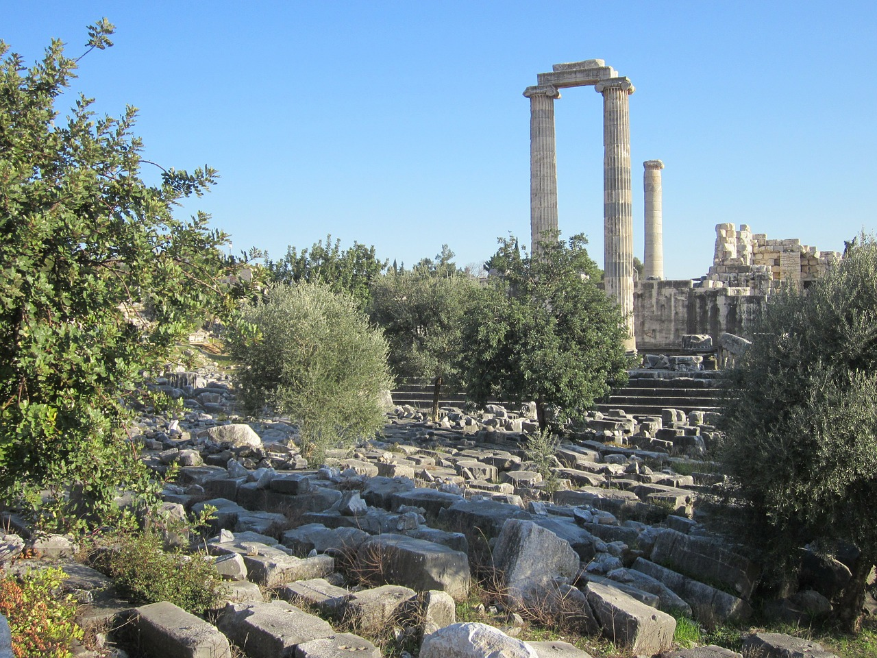 apollo temple didim didyma free photo