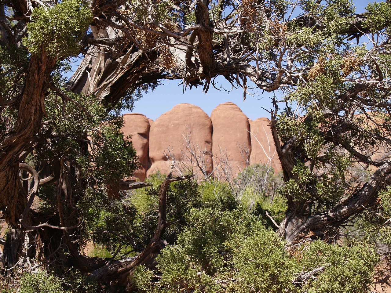 arches national park mountain red free photo