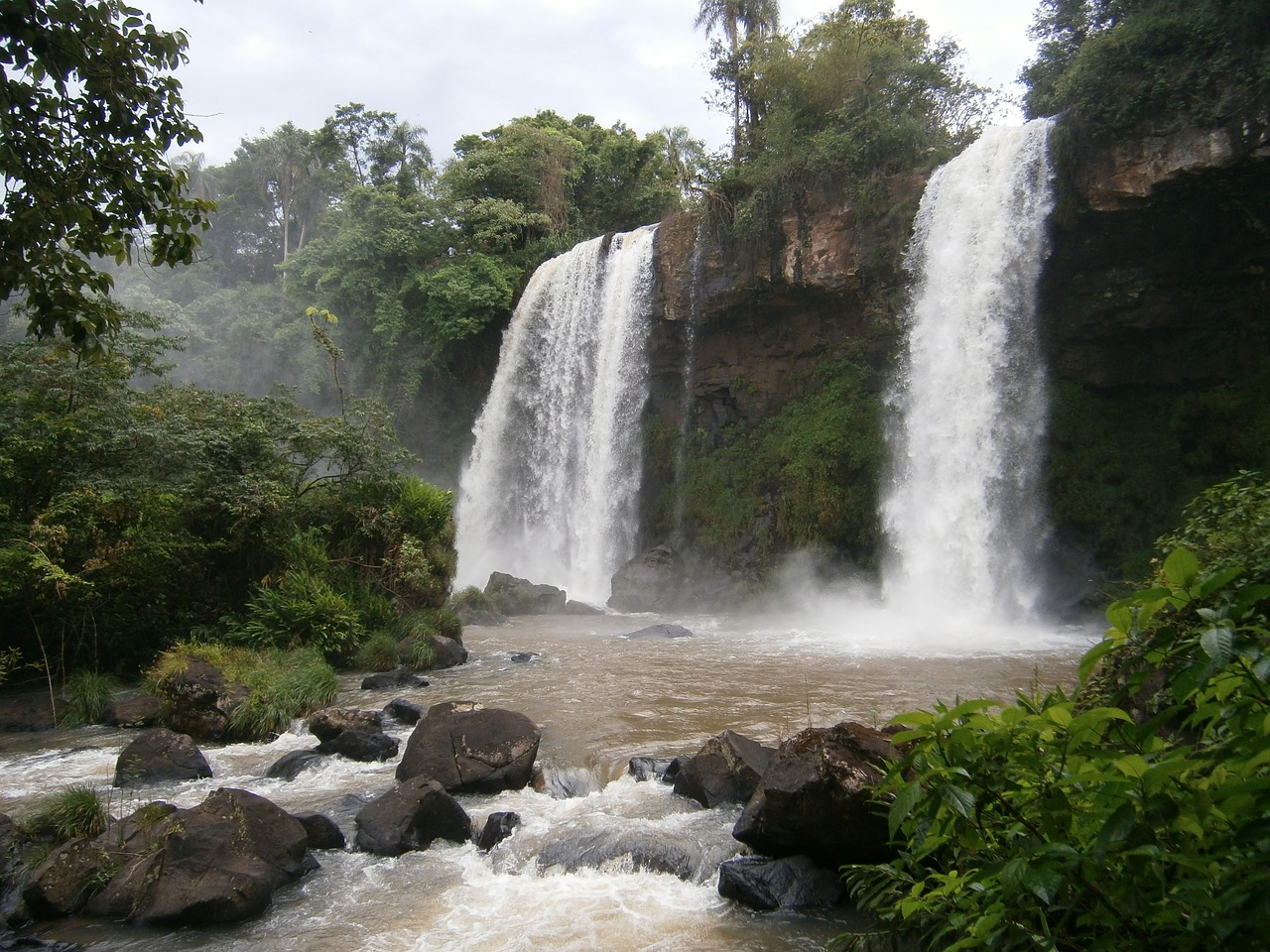 argentina falls jungle free photo