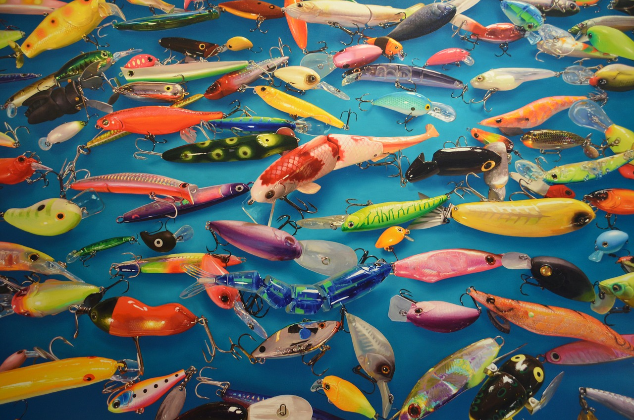 art color fish free photo