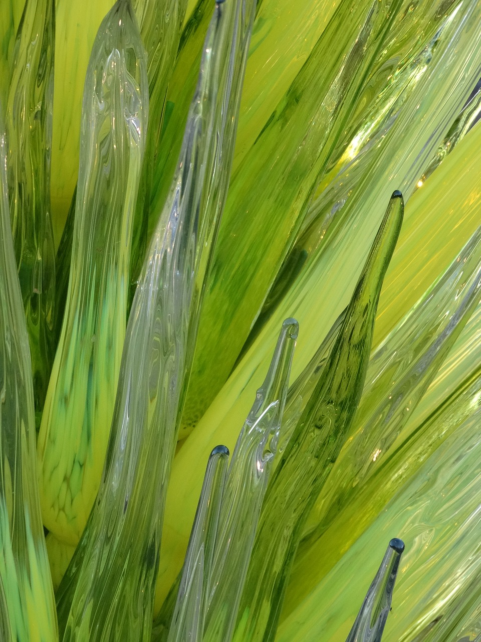art glass,chihuly,green,glass,design,free pictures, free photos, free images, royalty free, free illustrations