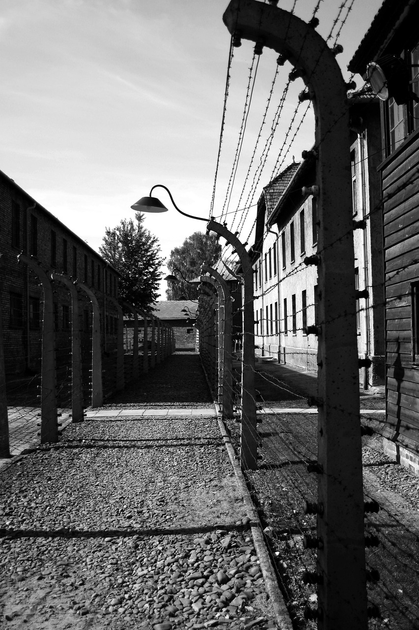 auschwitz,perimeter fence,corridor,electrified barbed wire,poland,oswiecim,free pictures, free photos, free images, royalty free, free illustrations, public domain