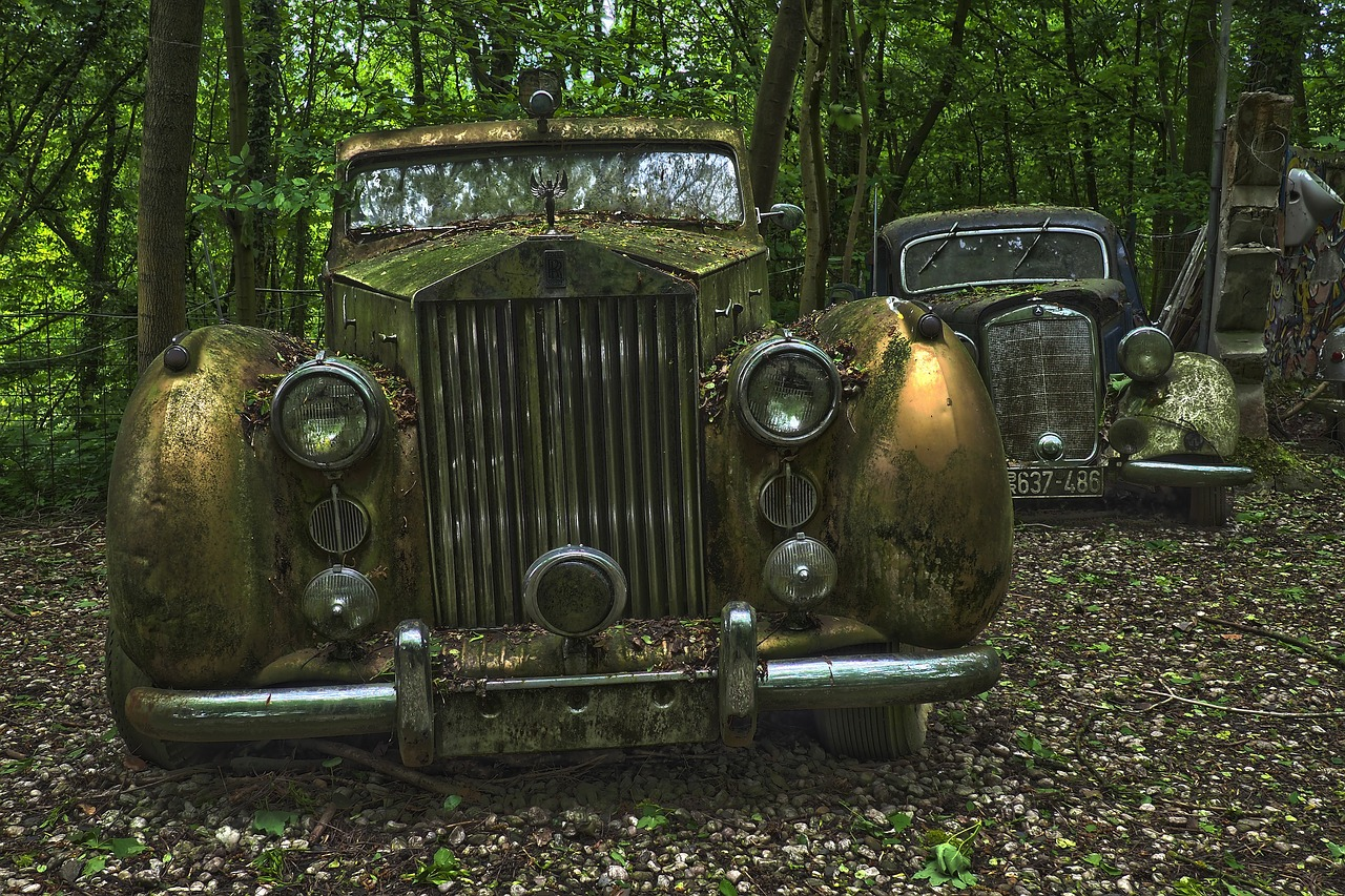 auto  car cemetery  oldtimer free photo