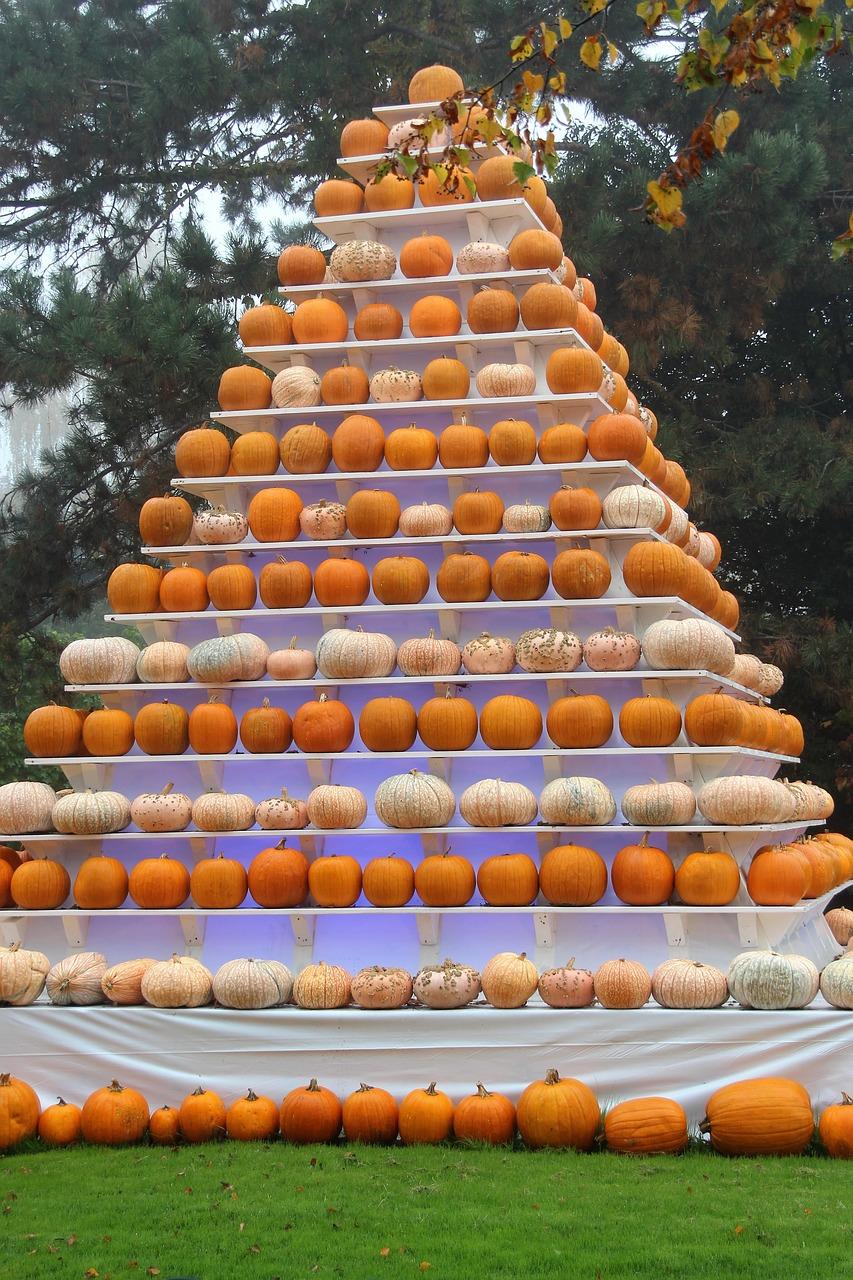 autumn,pyramid,pumpkin,halloween,deco - free photo from needpix