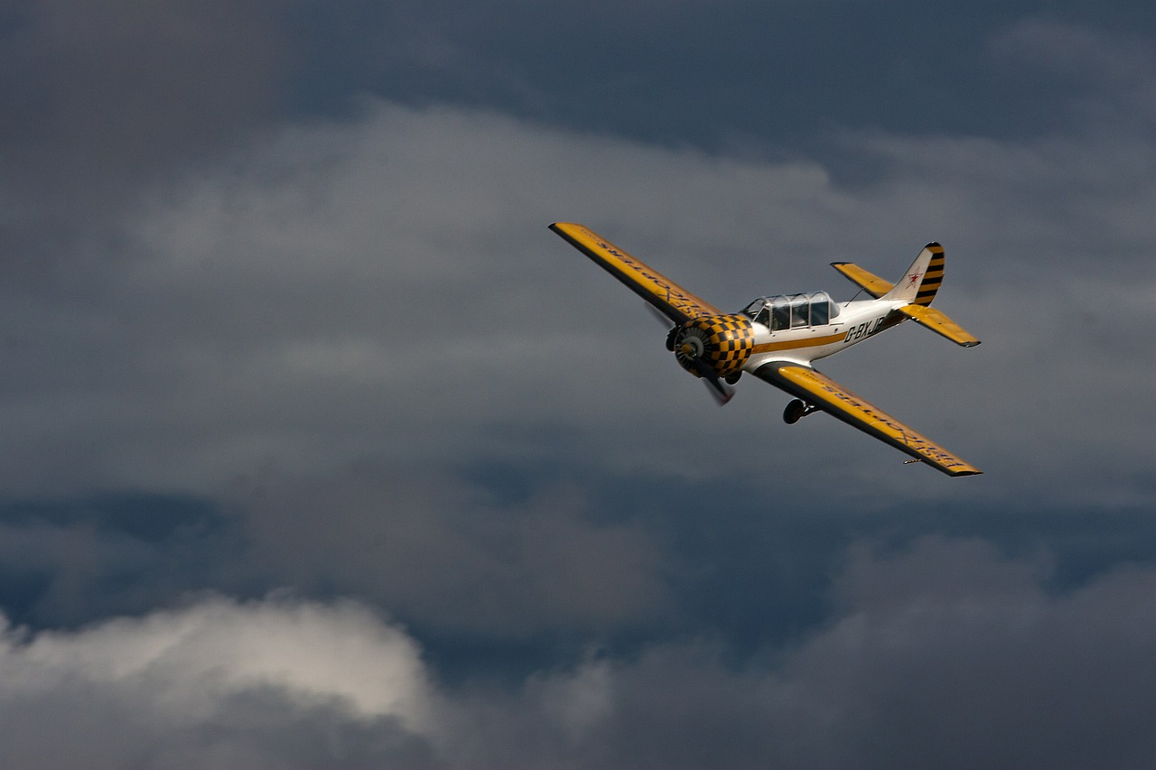 aviation plane two seater free photo