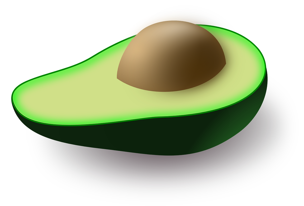 avocado fruit green free picture