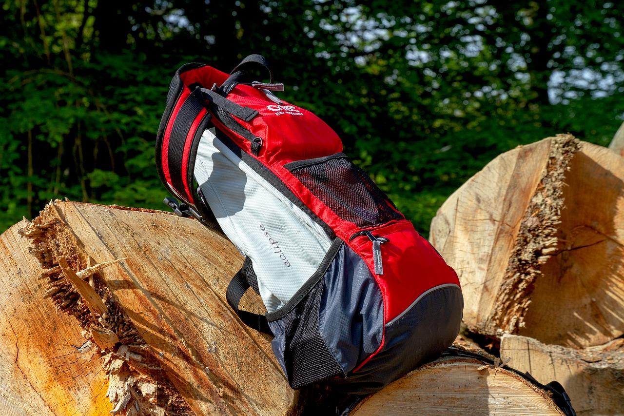 Backpack, nature, sport, wood, tree - free image from needpix.com
