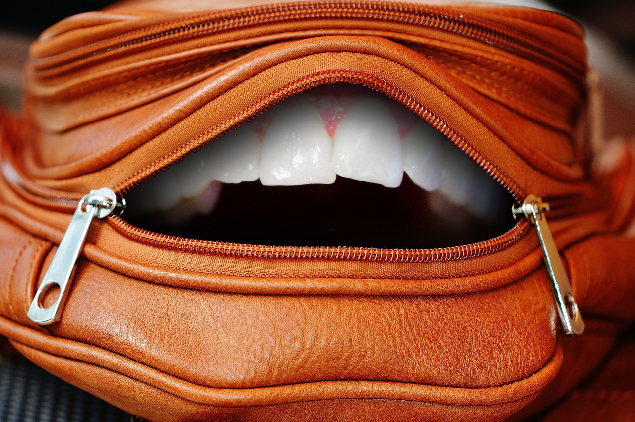 bag zip tooth free photo