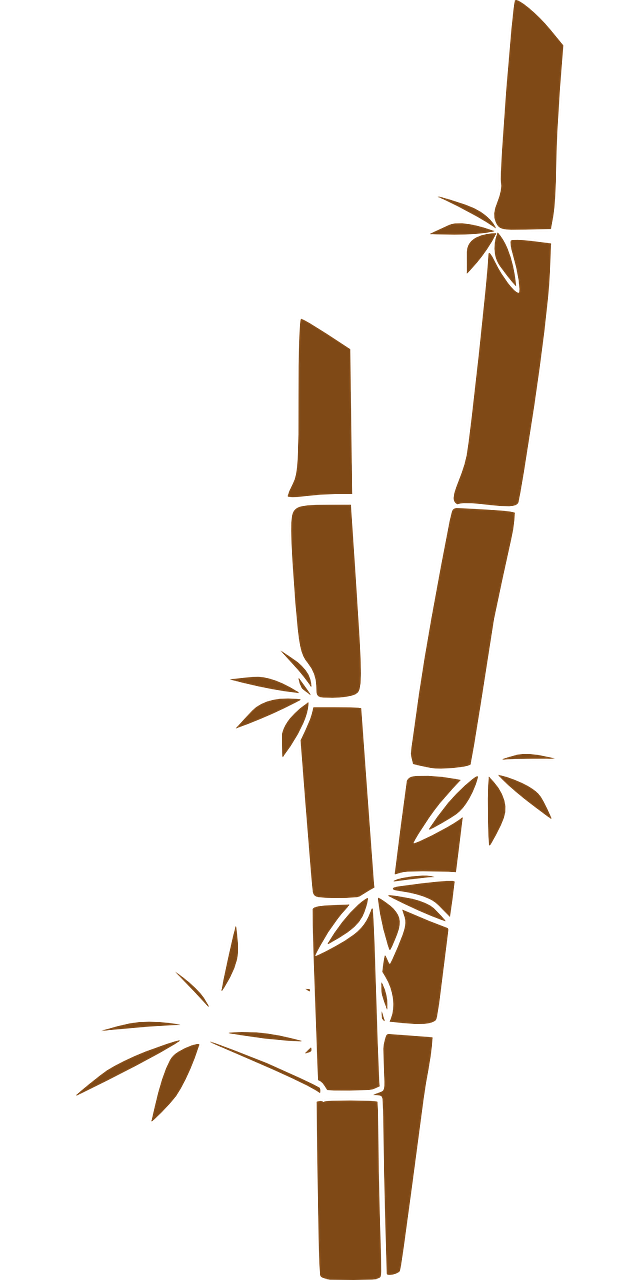 bamboo,stalks,tropical,plant,japanese,leaf,tree,chinese,botanical,zen,asia,branch,growth,garden,shoots,feng shui,free vector graphics,free pictures, free photos, free images, royalty free, free illustrations