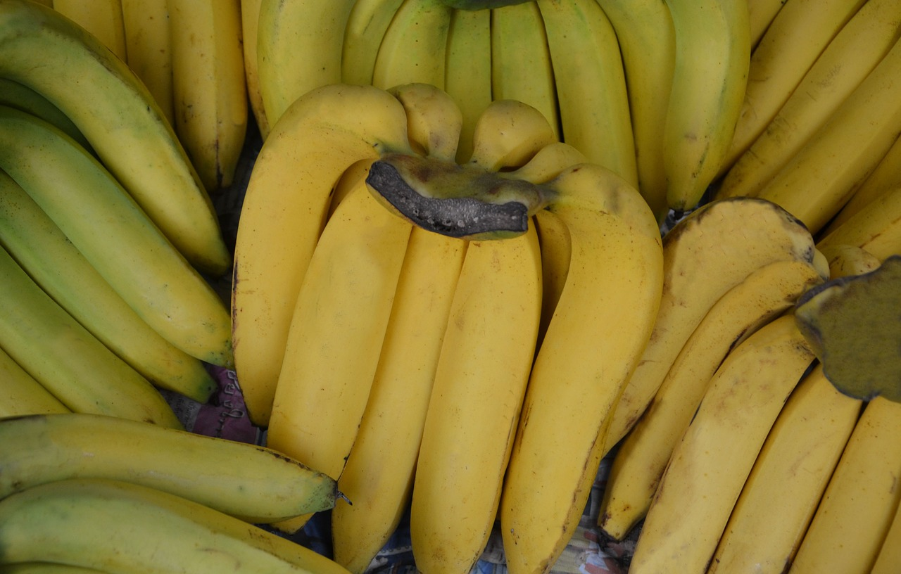 bananas fruit yellow free photo
