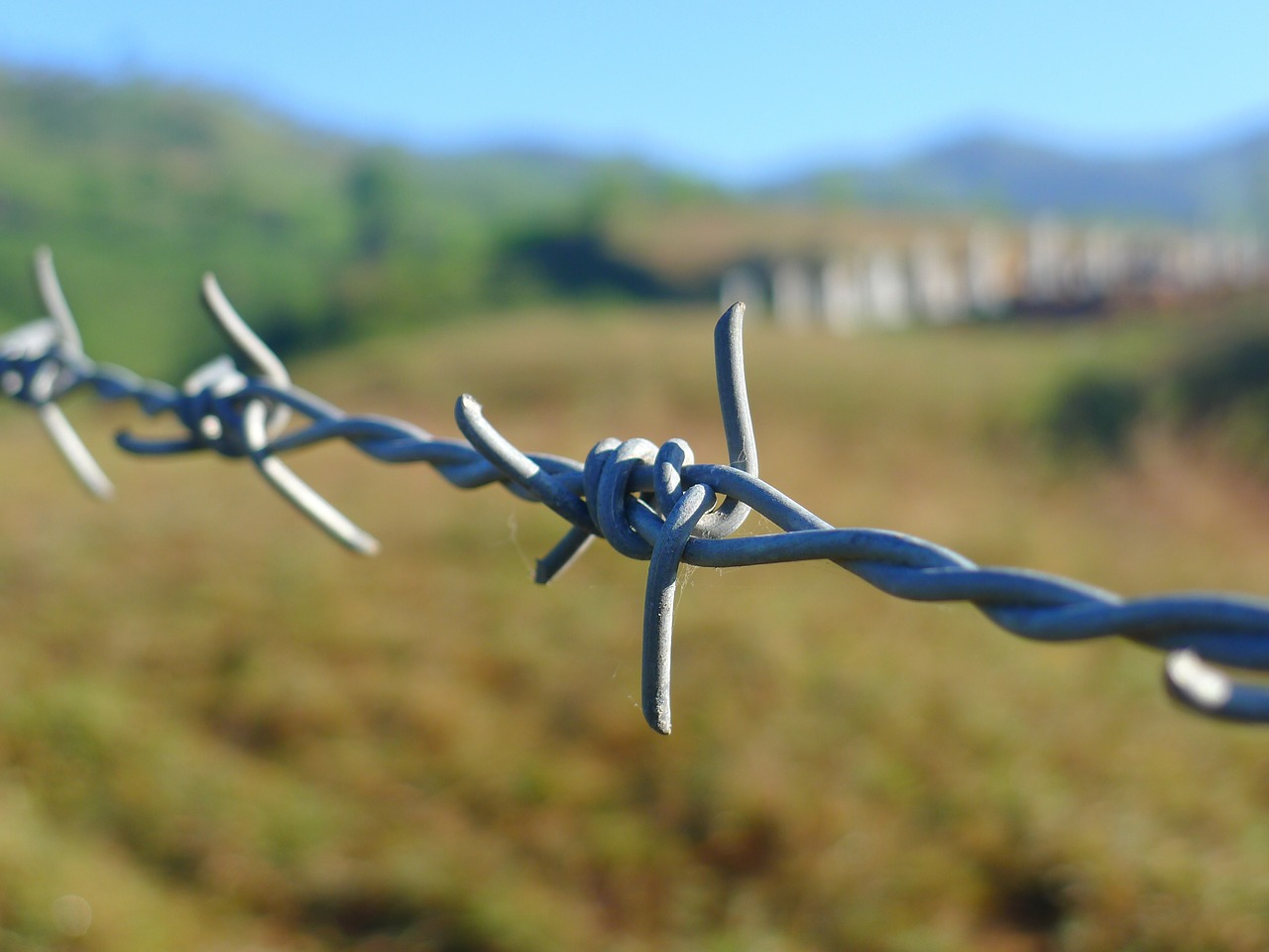 barbed wire fence border free photo