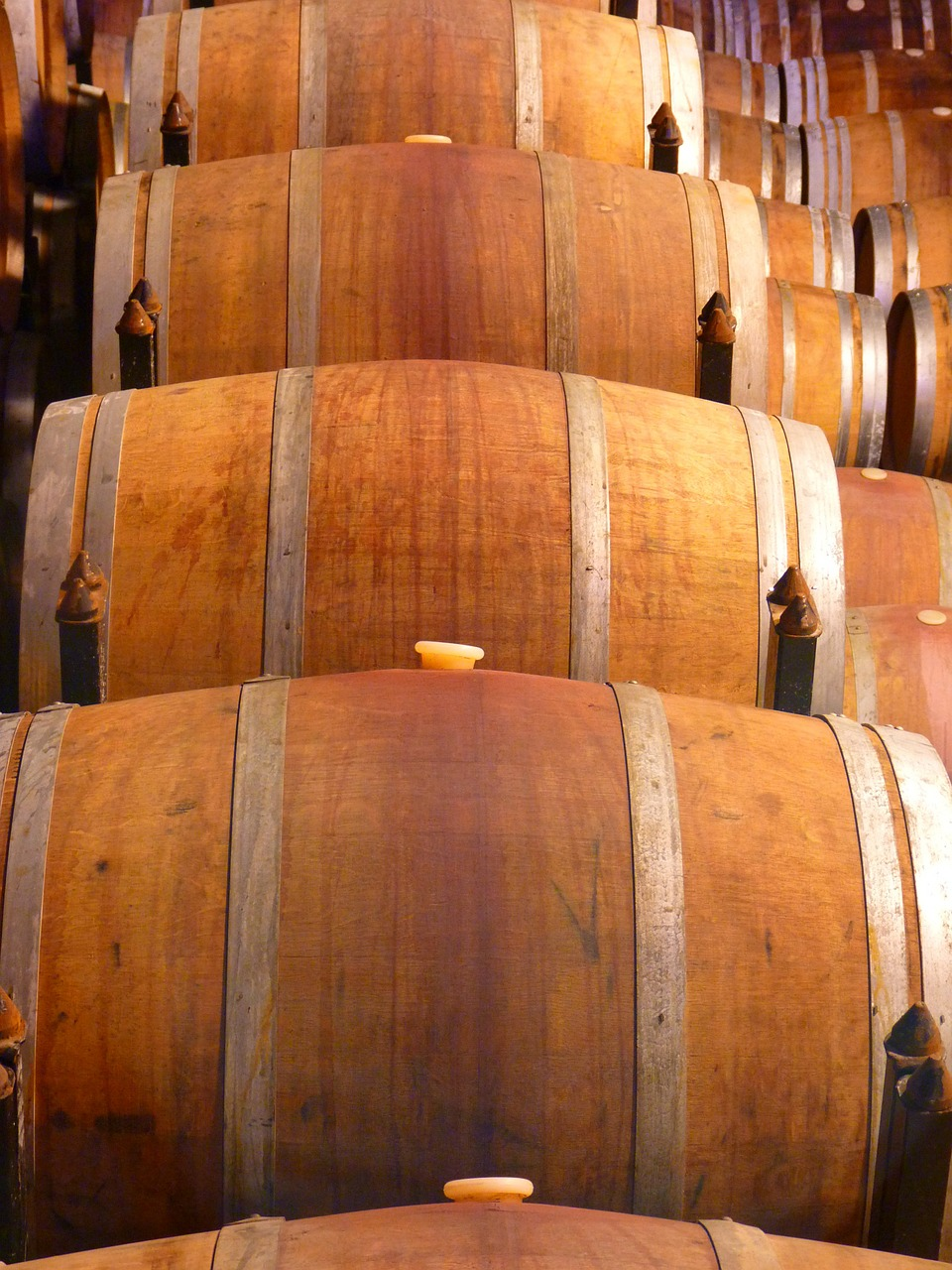 barrel wine wine barrels free picture