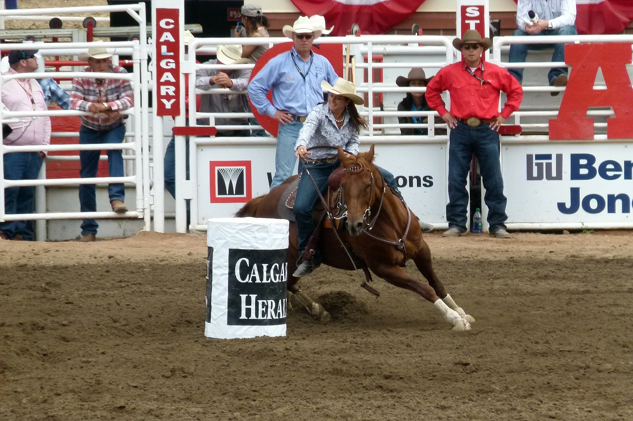 barrel racing calgary stampede free photo