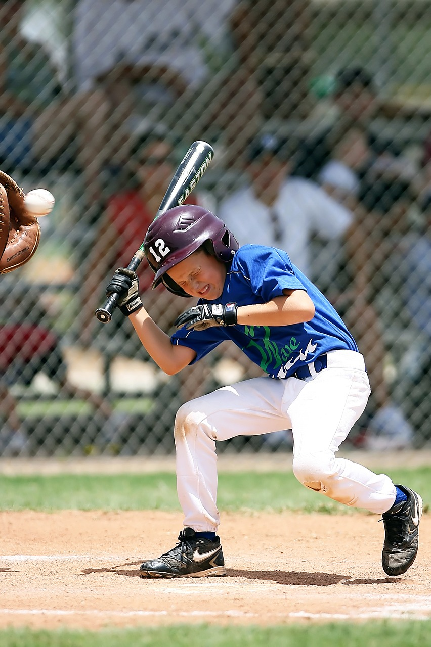 baseball little league batter free photo