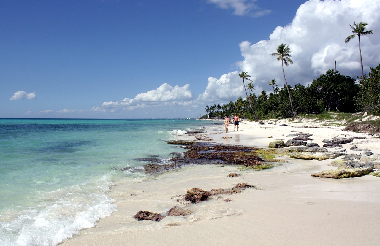 bayahibe the national park of the east parque nacional del este free photo
