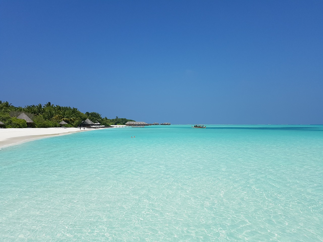 beach atoll maldives free photo