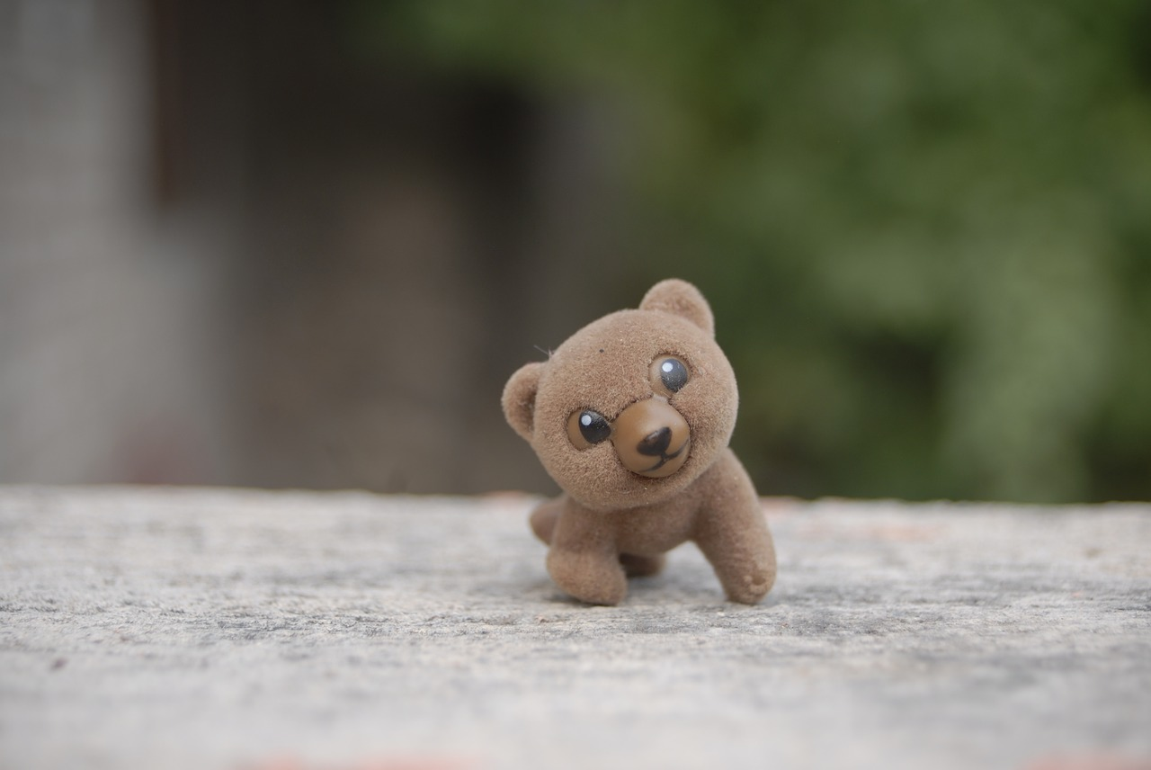 bear toy tenderness free photo