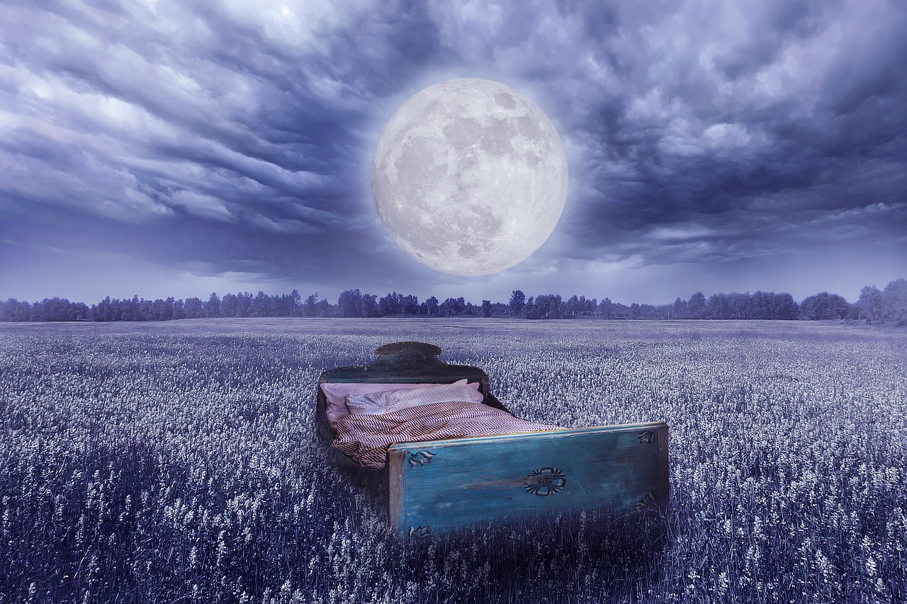 bed full moon meadow free photo