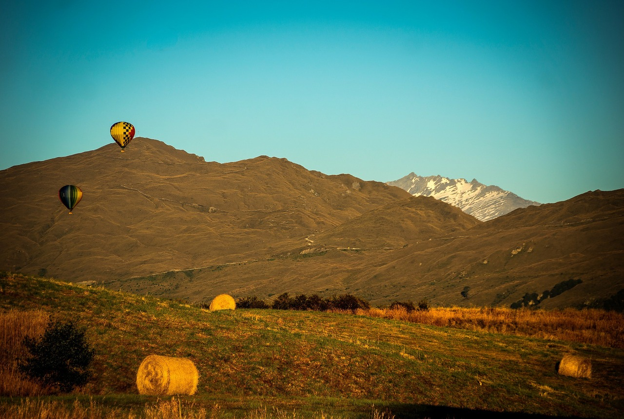 Bendemeer Estates New Zealand Snow Capped Mountains Hay