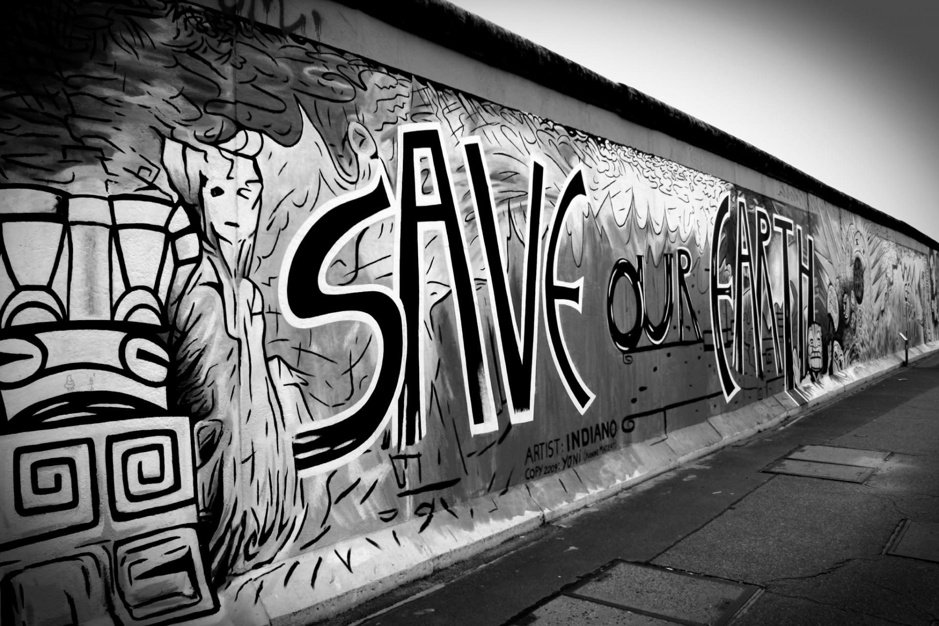 фотографии граффити черно белые куриные яйца