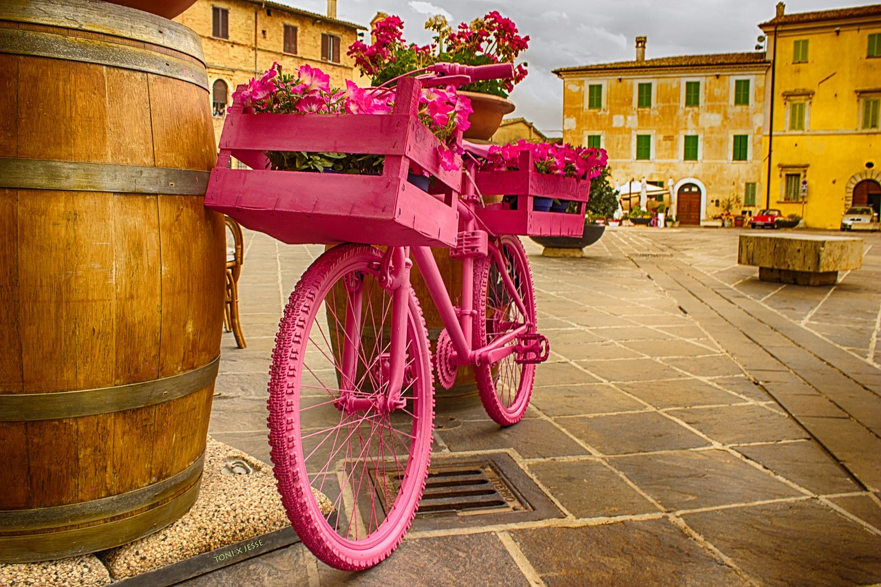bicycle rosa botte free photo