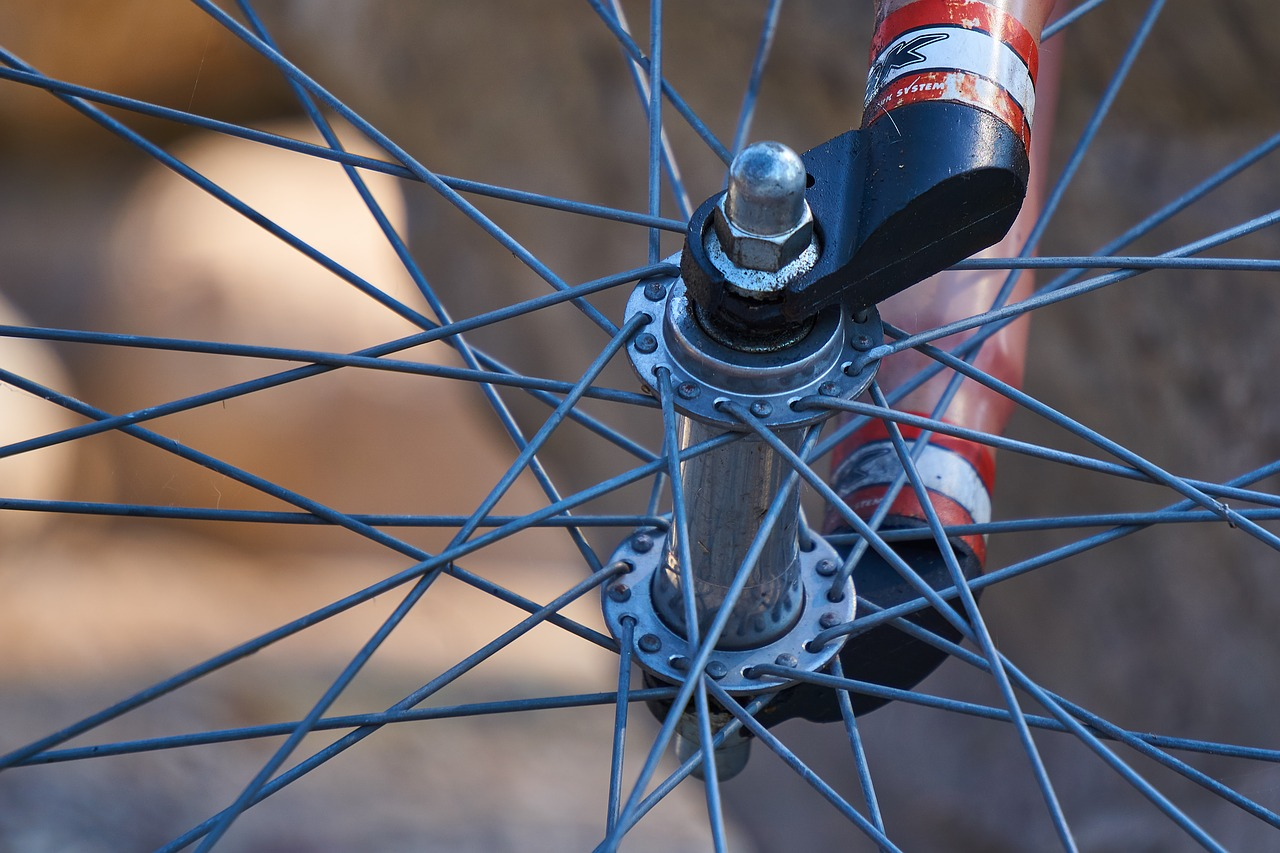 bicycle tires  rim  spokes free photo