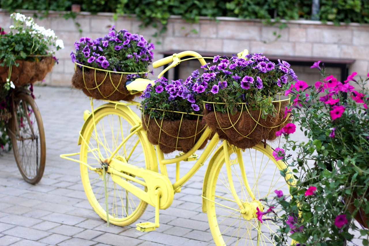 bike floral bike dubai miracle garden free photo