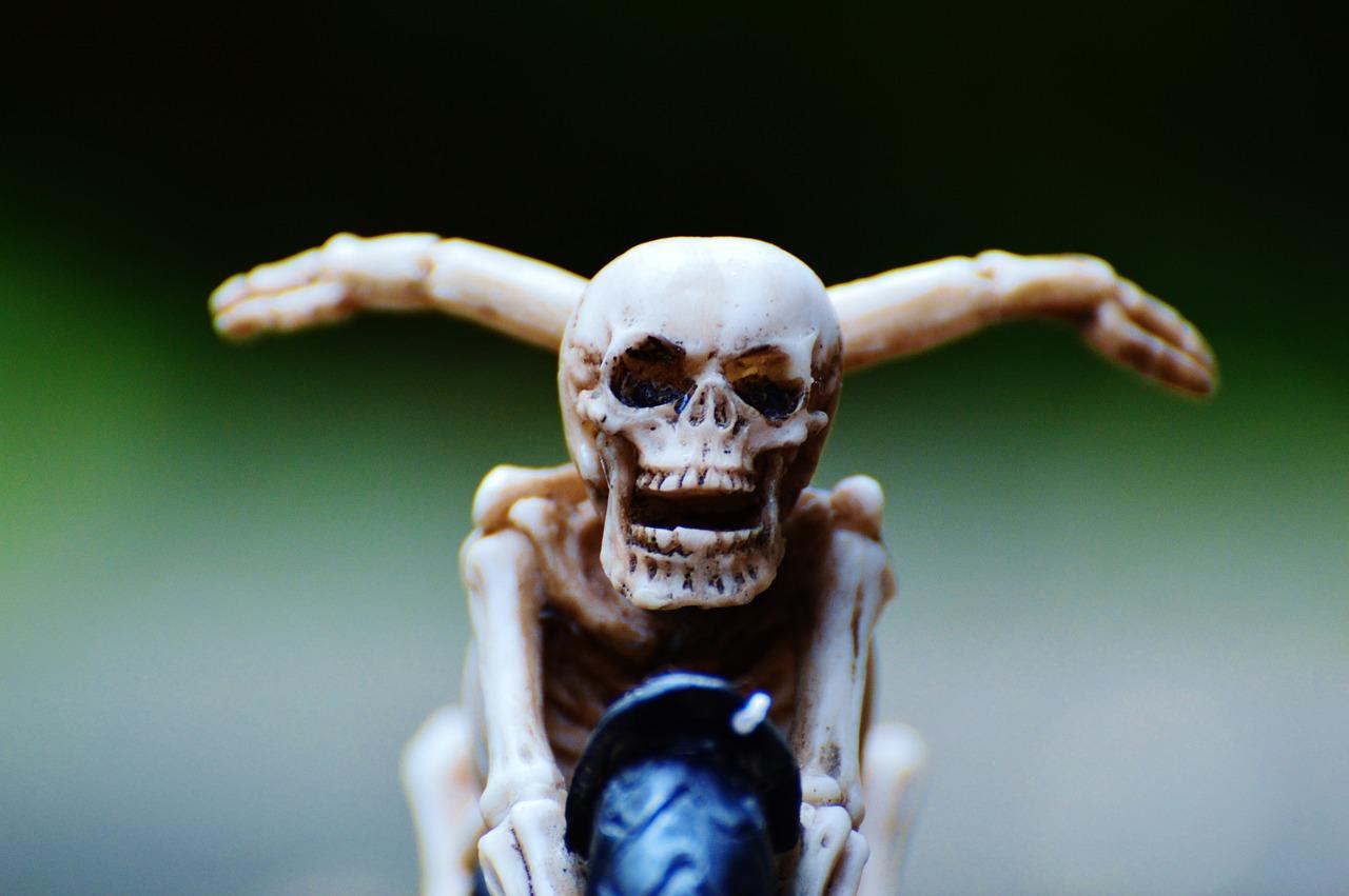 Biker,skeleton,creepy,weird,decoration - free image from nee