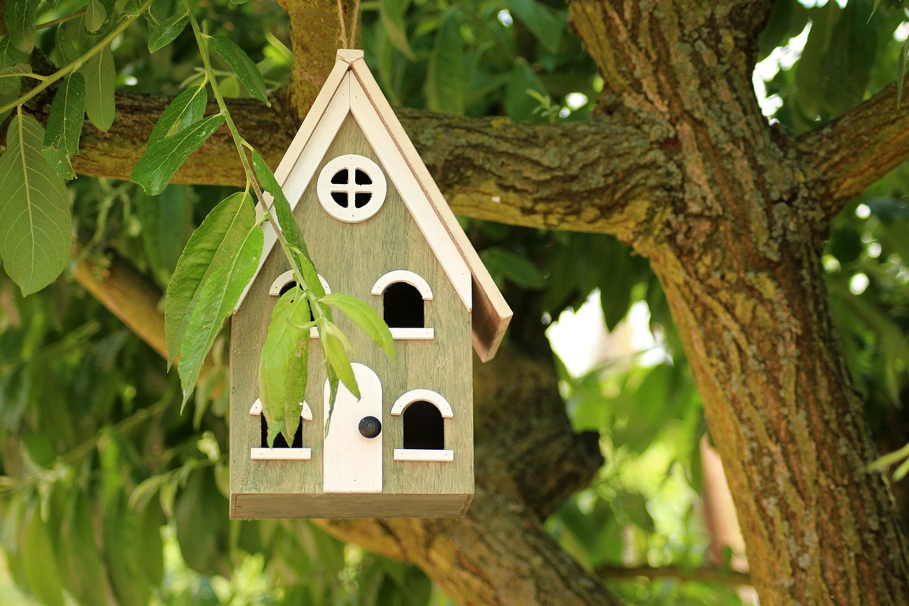 birdhouse  breeding shed  for the birds free photo