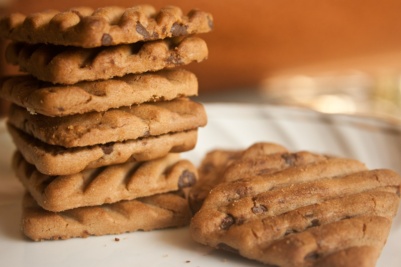 biscuits chocolate chips cookies free photo
