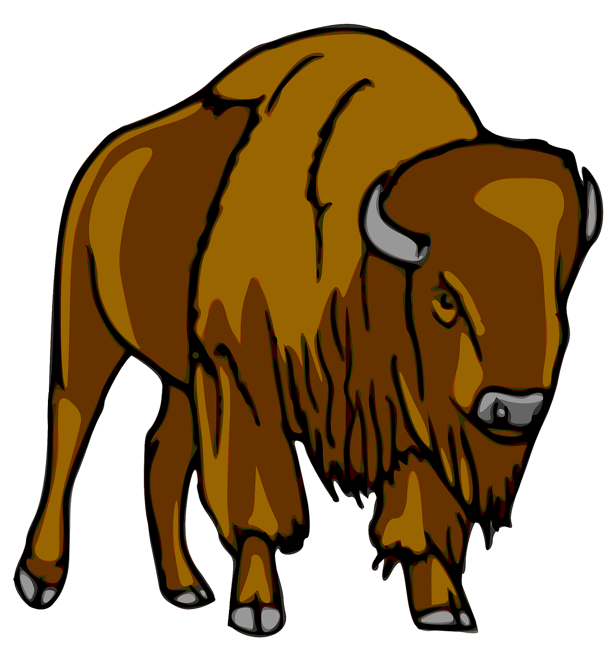 bison buffalo animal free photo