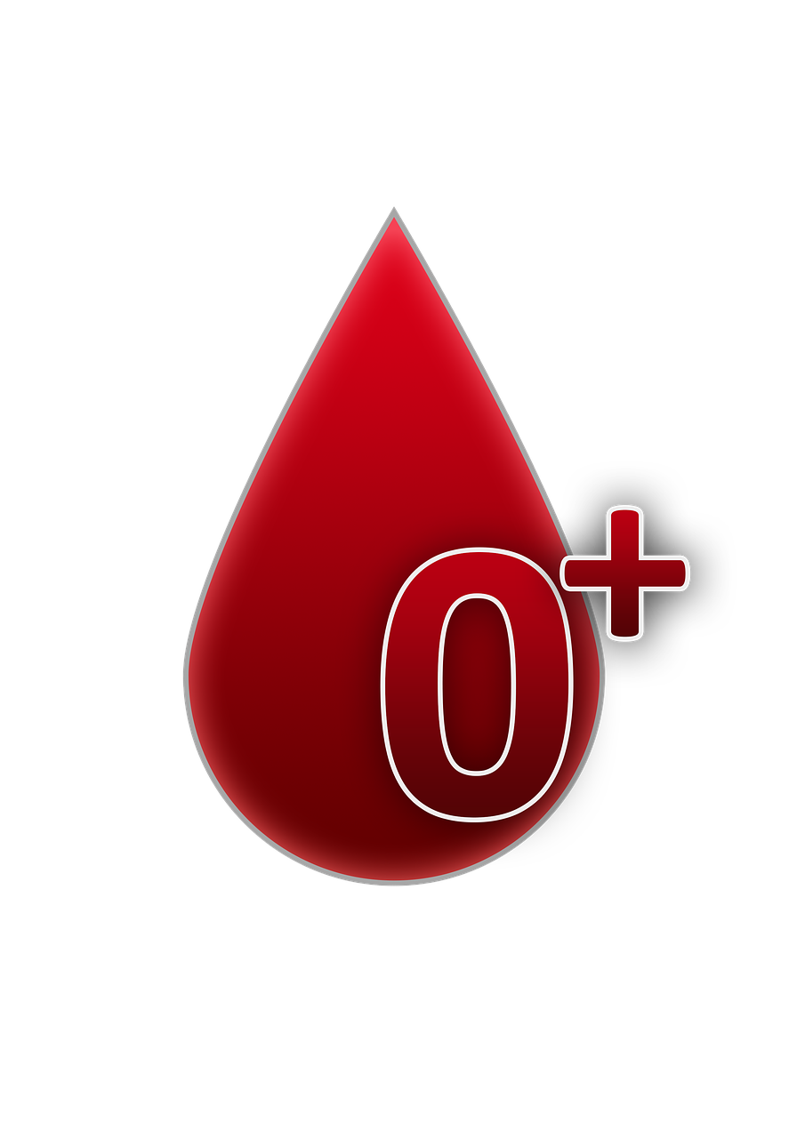 blood group 0 rh factor positive free photo