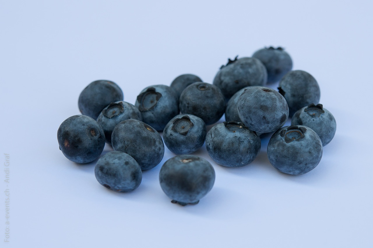 blueberries fruits berries free picture