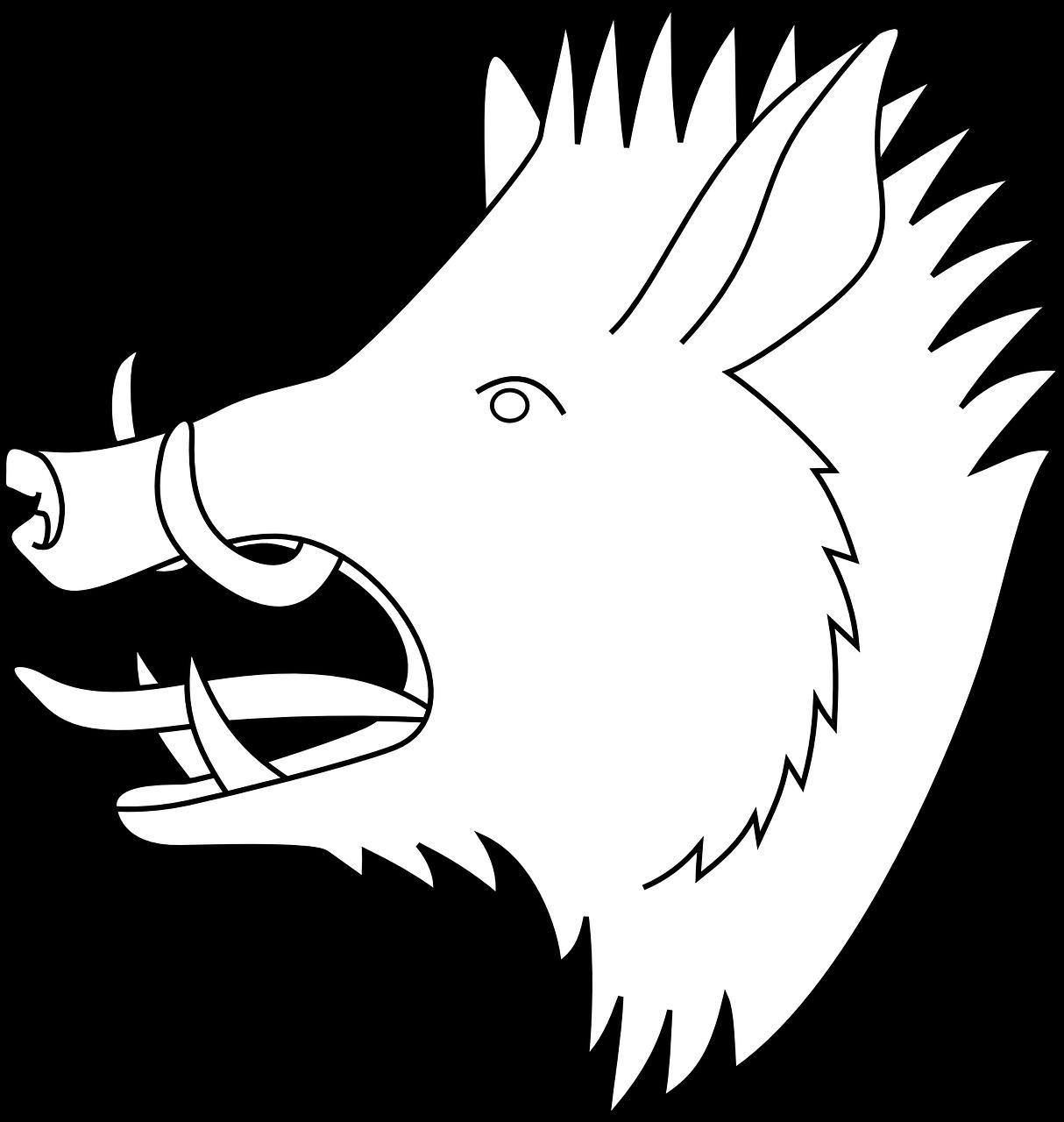 Boar Hog Pig Animal Head Free Image From Needpix