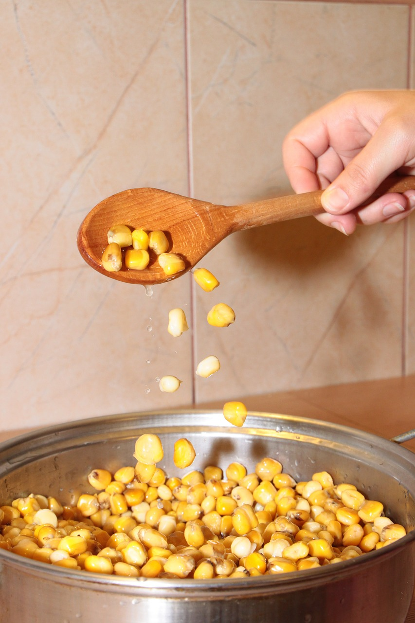boiled cereals corn free photo