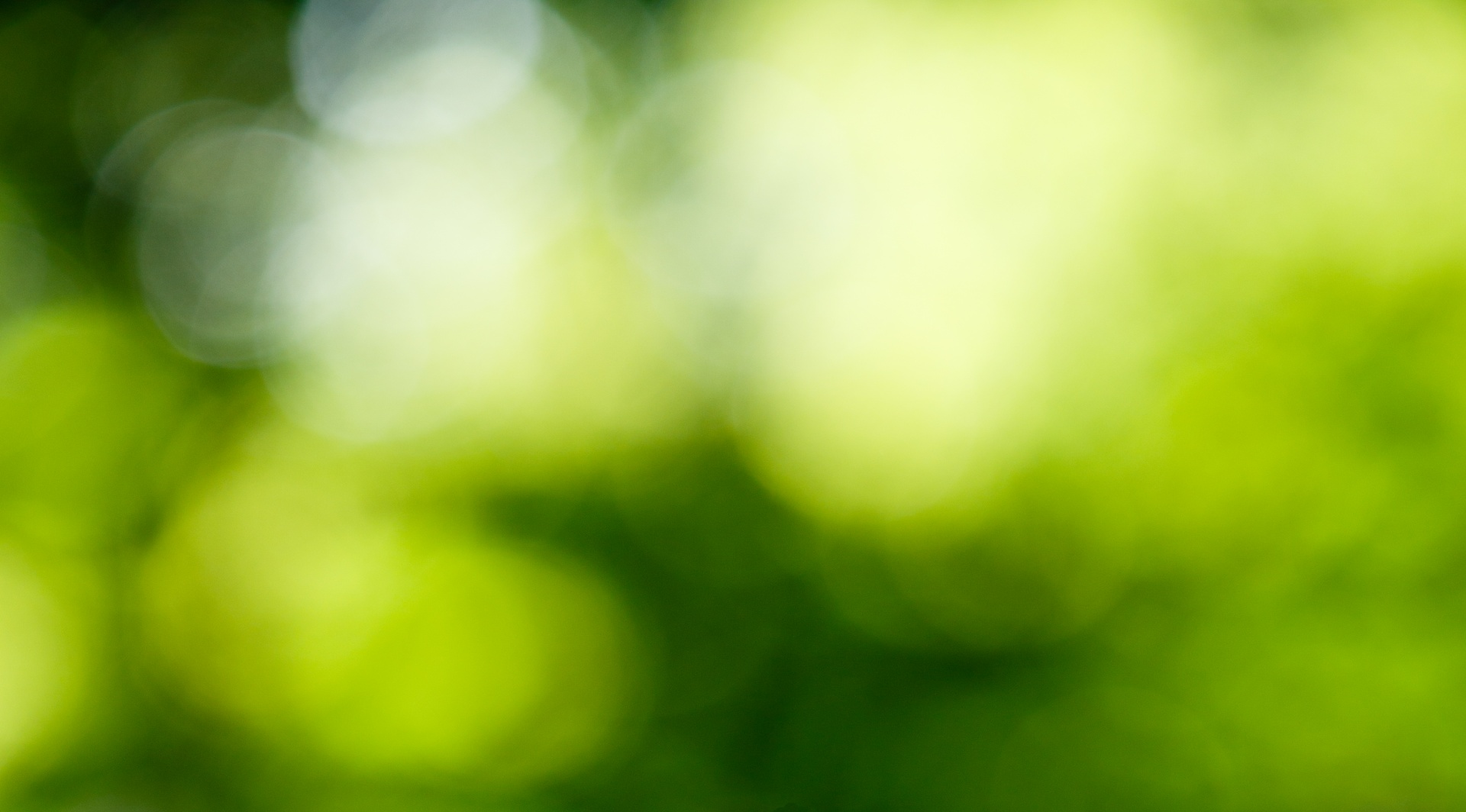 Bokeh Blurred Abstract Background Circles Free Photo