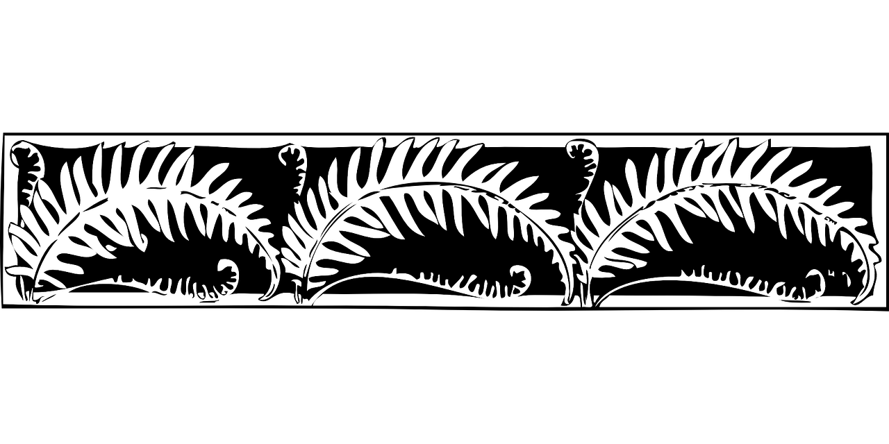 border,fern,decoration,flora,nature,foliage,plant,free vector graphics,free pictures, free photos, free images, royalty free, free illustrations, public domain