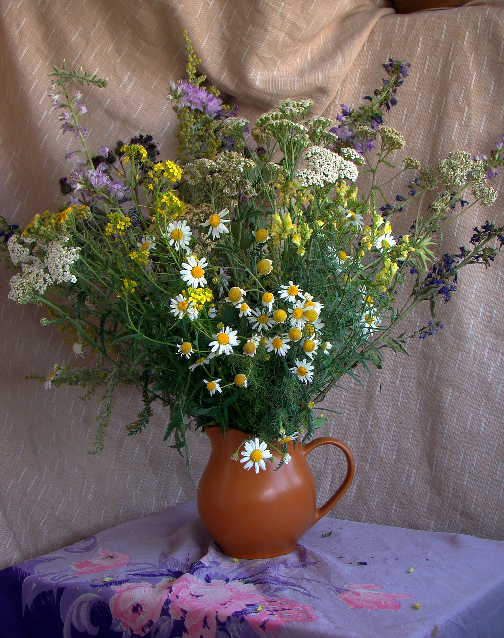 bouquet,pitcher,still life,art direction,flowers,chamomile,yarrow,bells,flowers of the field,drapery,summer,free pictures, free photos, free images, royalty free, free illustrations, public domain