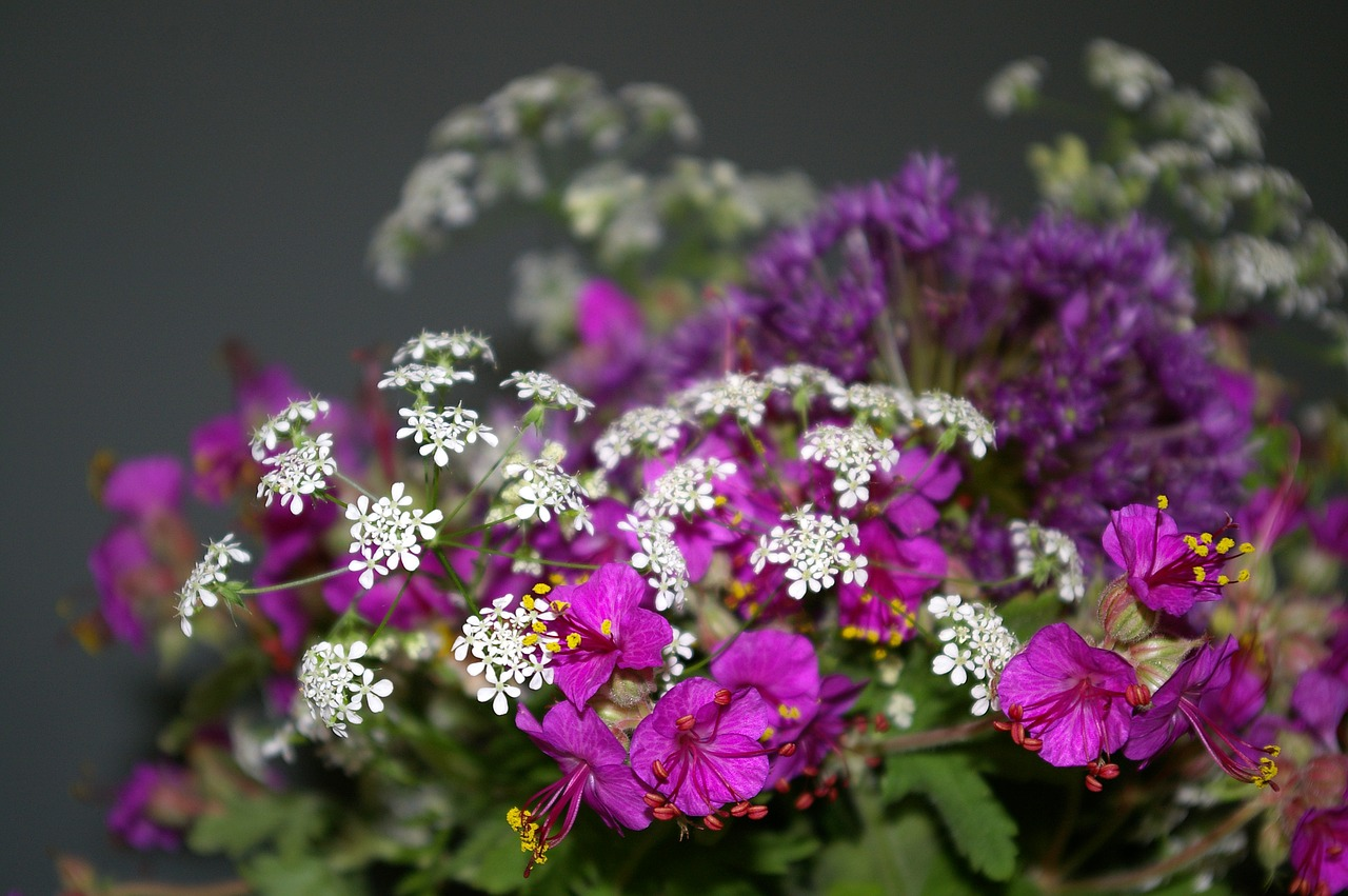 bouquet of flowers  filigree  cranesbill free photo