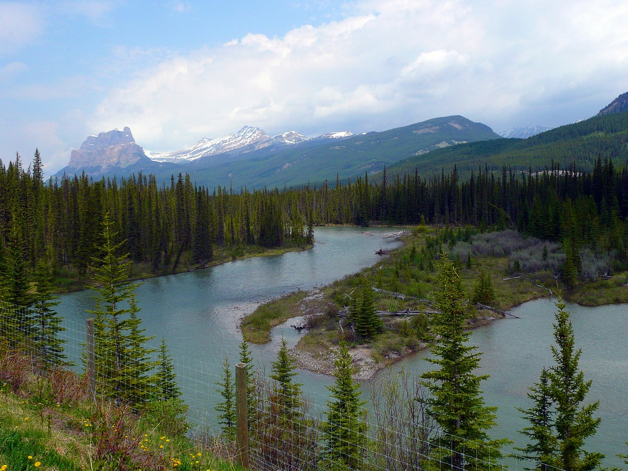 bow river canadien rockys mountains free photo