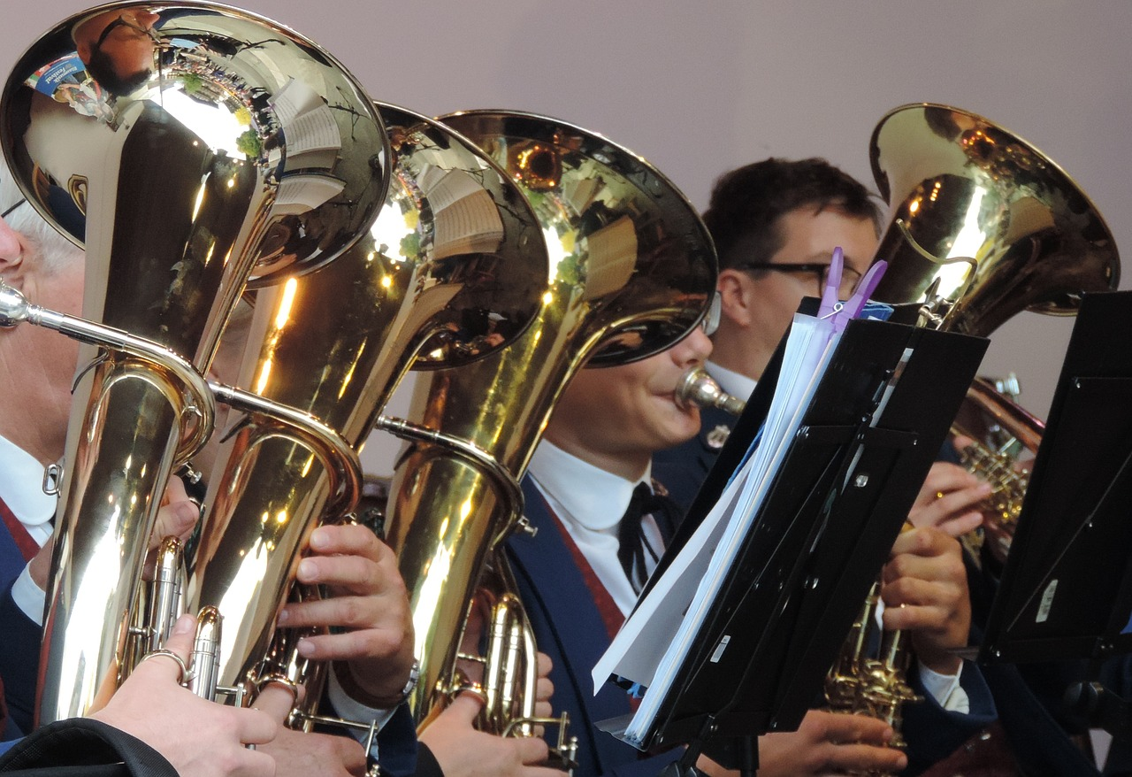Brass band,horns,musician,free pictures, free photos - free photo