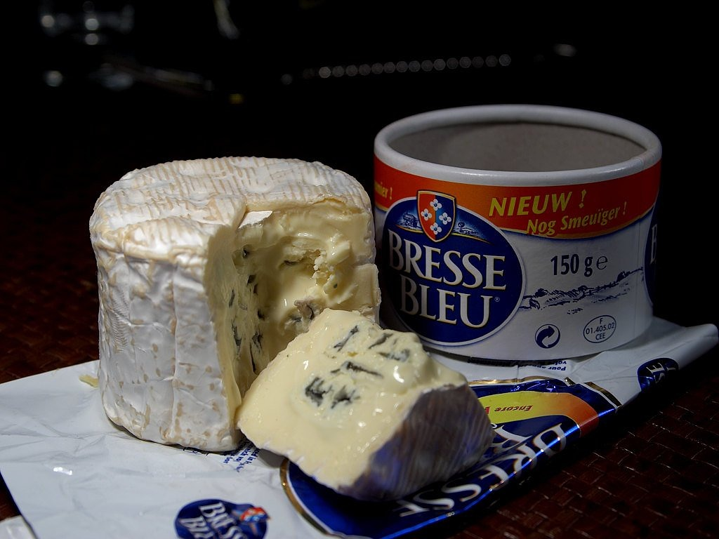 bresse bleu cheese blue mold mold free picture