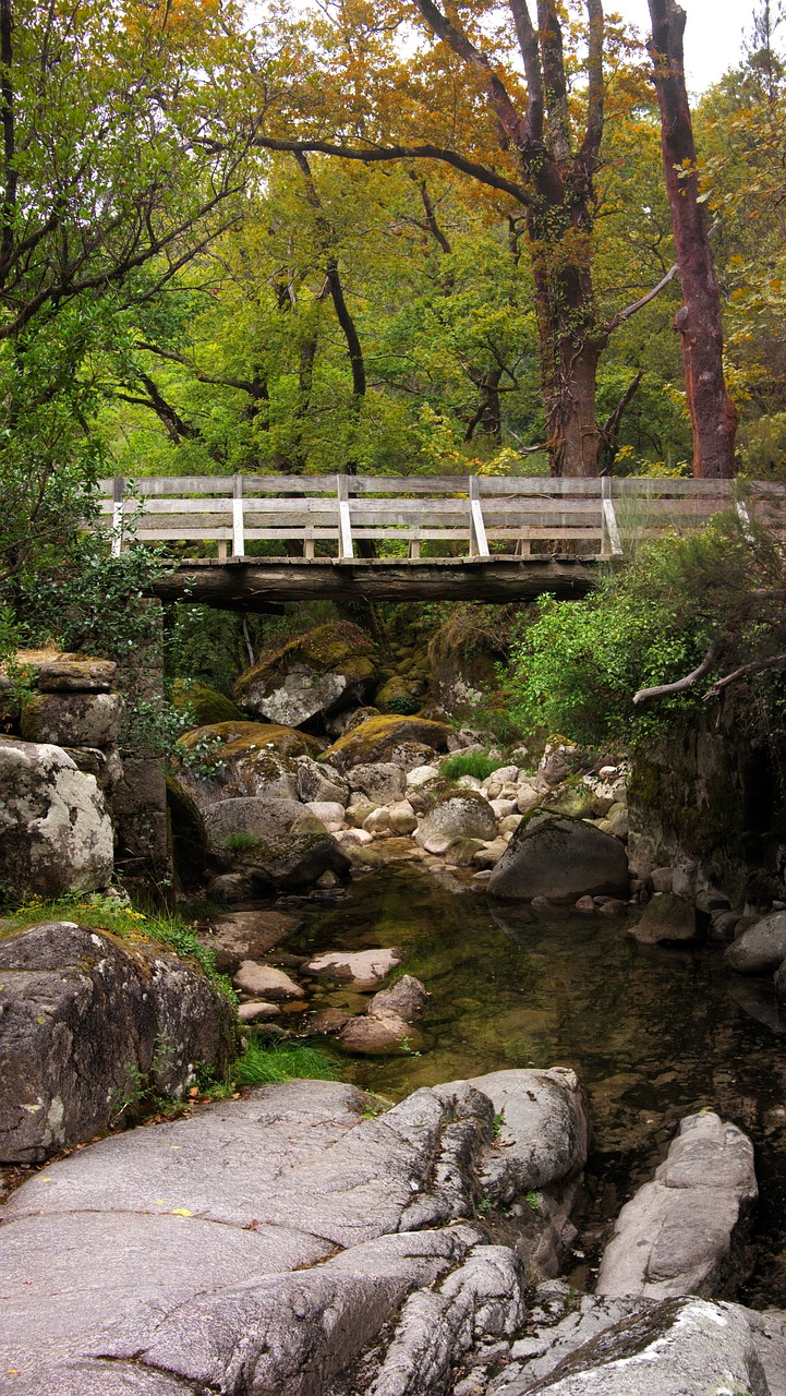 bridge,nature,landscape,portugal,park,forest,natural,outdoor,scenic,river,scenery,national park,national park peneda-geres,free pictures, free photos, free images, royalty free, free illustrations, public domain